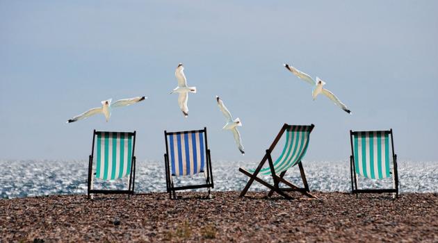solstolar och fiskmåsar på en strand